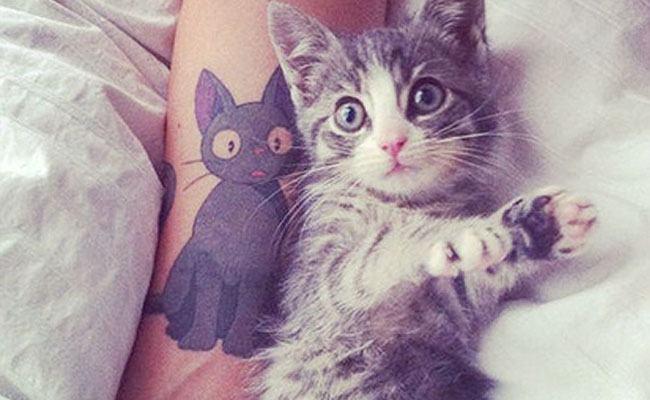 tatuaje de gatos para mujeres