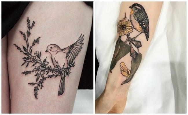 Tatuajes de aves pequeñas