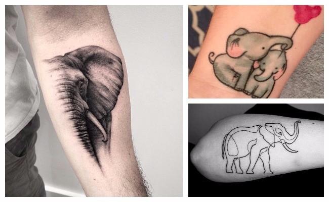 Tatuajes de dos elefantes
