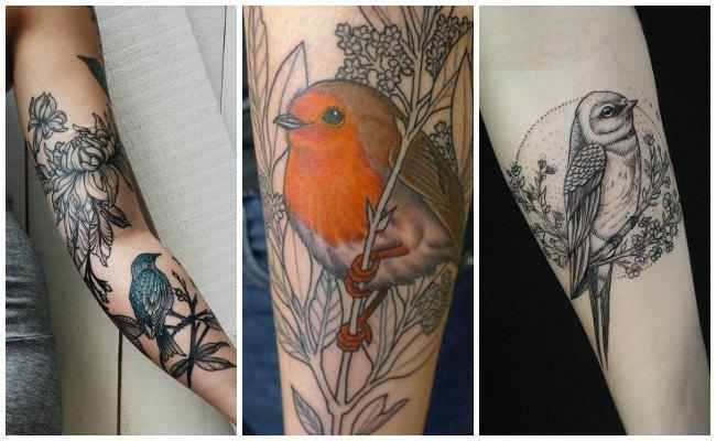 Tatuajes de pájaros con colores