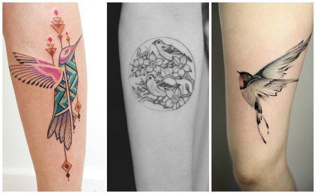 Tatuajes de pájaros en la espalda