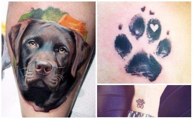 Tatuajes de perros pitbull