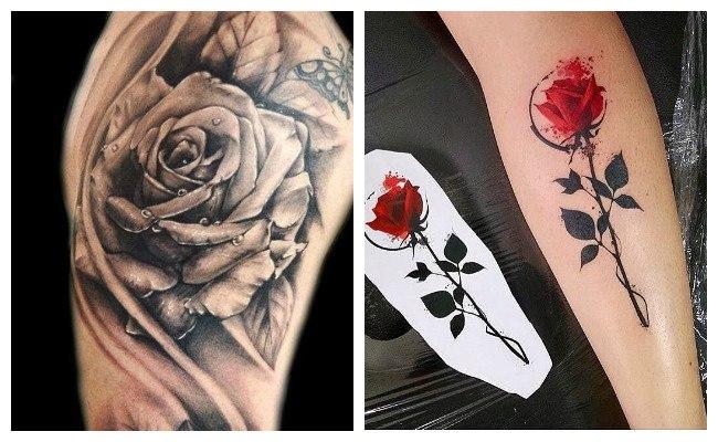 Tatuajes de rosa en acuarela