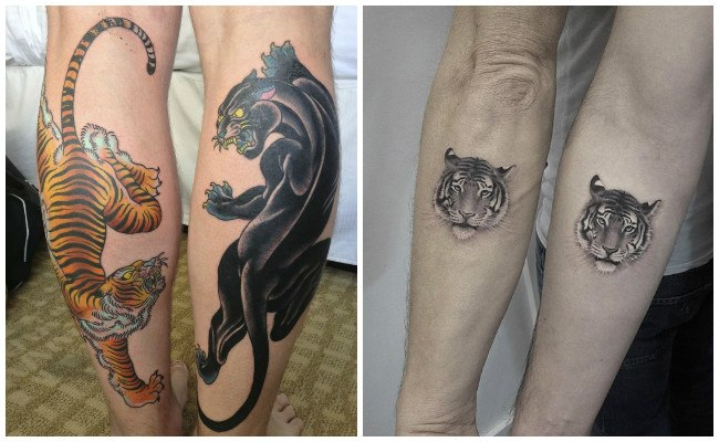 Tigre blanco tatuaje