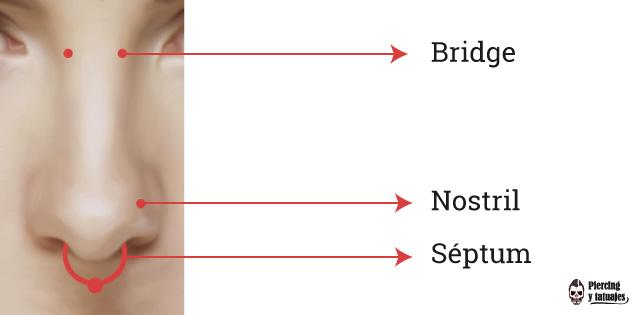 Nombres-de-piercing-en-la-nariz